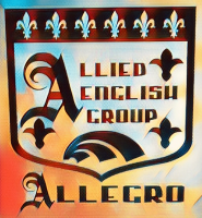 Centro de Lenguas ALLied English GROup